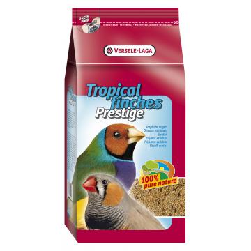 Prestige oiseaux exotiques