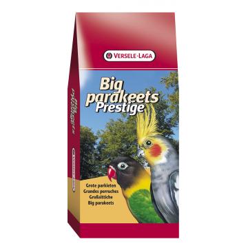 Prestige Grandes Perruches / Euphèmes