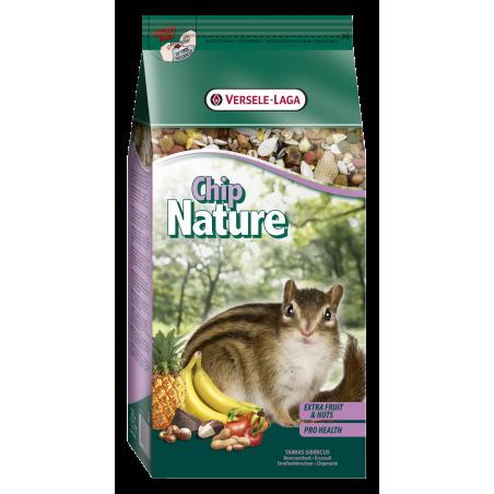 Chip nature écureuil