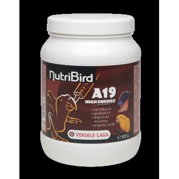 Nutribird A19 High Energy - Pâtée pour élevage à la main pour oisillons demandant beaucoup d'énergie